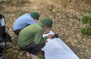 Rà soát diện tích rừng để làm cơ sở chi trả dịch vụ môi trường rừng 2020
