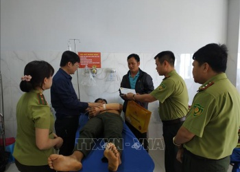 Nhiều áp lực trong quản lý, bảo vệ rừng ở Đắk Lắk