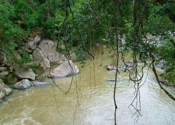 Truy quét lâm tặc phá rừng khu bảo tồn Ea Sô