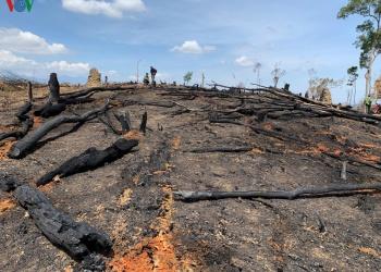 Thâm nhập điểm nóng phá rừng Ea Kar