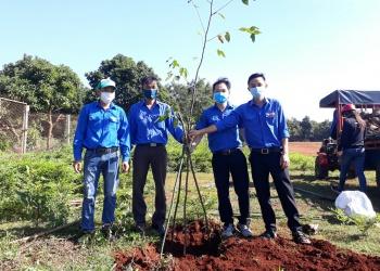 Đoàn thanh niên Quỹ Bảo vệ và Phát triển rừng tỉnh phối hợp với Đoàn thanh niên các địa phương tổ chức trồng cây bảo vệ môi trường