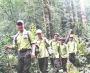 Tăng cường công tác quản lý, bảo vệ rừng